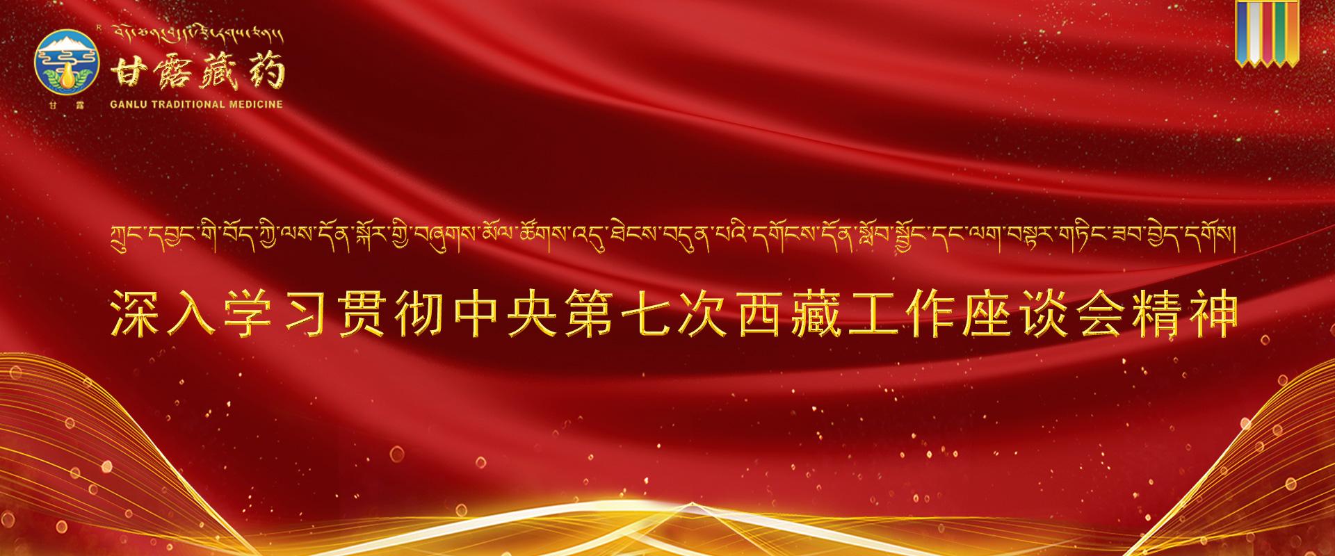 西藏工作座谈会1